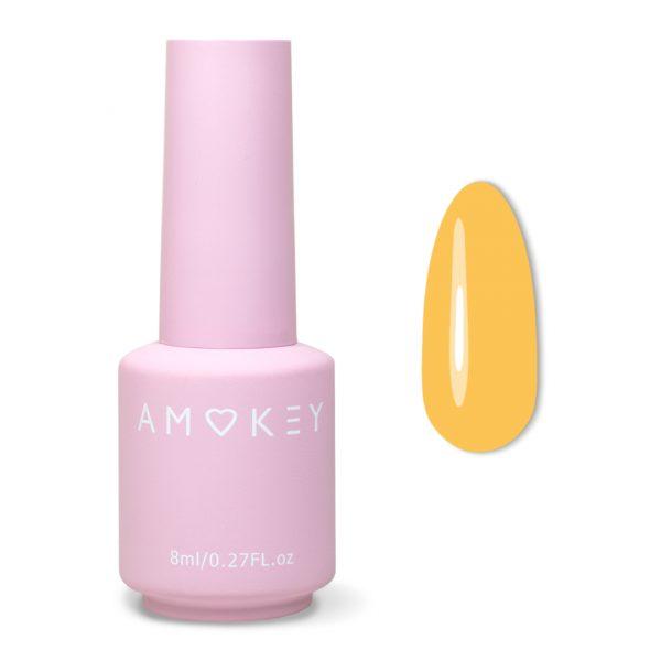 Amokey Color Gel Polish-004